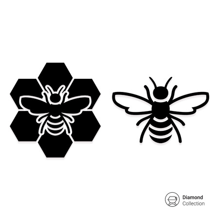 apiculture: Vector icon of bee and bee sitting on comb Illustration