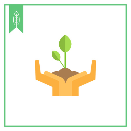 sprout: Icon of human hands holding green sprout