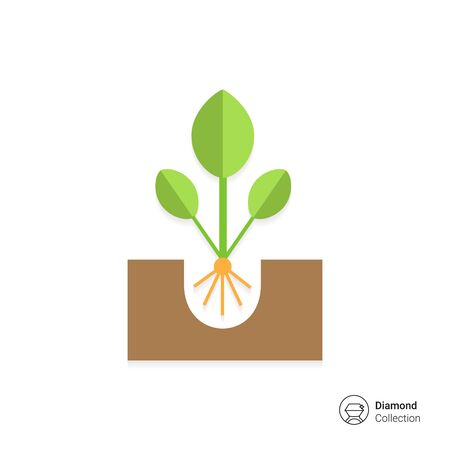 sprout: Icon of growing green sprout