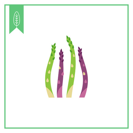 asparagus: Vector icon of fresh green asparagus stems
