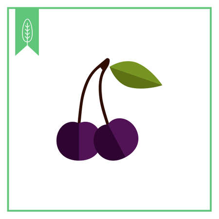 rational: Vector icon of dark bird cherry berries with leaf