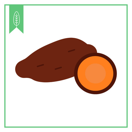 yam: Vector icon of yam tuber and cut yam half