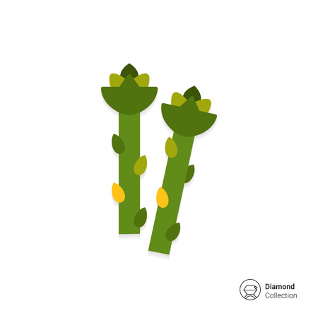 rational: Vector icon of fresh green asparagus stems