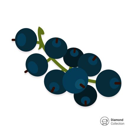 rational: Vector icon of ripe black currant bunch