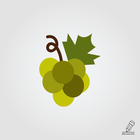 grapes on vine: Vector icon of grape bunch on stem with leaf Illustration