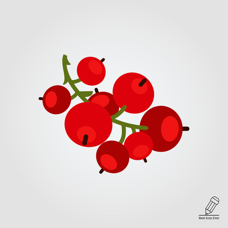 red currant: Vector icon of ripe red currant bunch Illustration