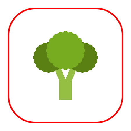 Vector icon of fresh green broccoli curd