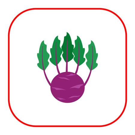 rational: Vector icon of kohlrabi with green leaves