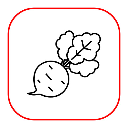 root crop: Beetroot icon Illustration