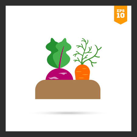 rational: Vector icon of growing kohlrabi and carrot in soil