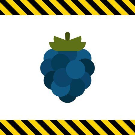 ripe: Vector icon of single ripe fresh blackberry