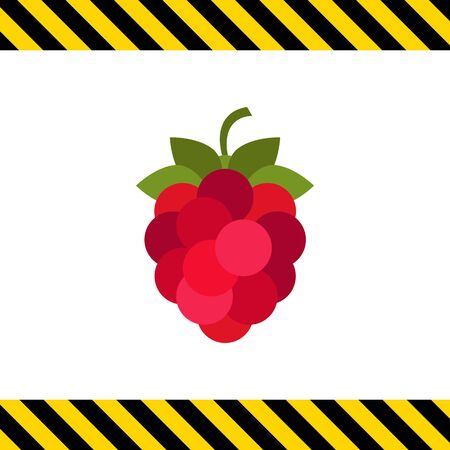rational: Vector icon of single ripe fresh raspberry Illustration