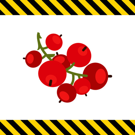 currant: Vector icon of ripe red currant bunch Illustration
