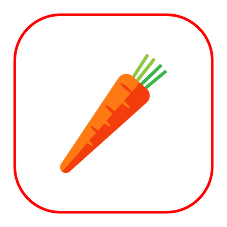 root crop: Multicolored vector icon of fresh orange carrot