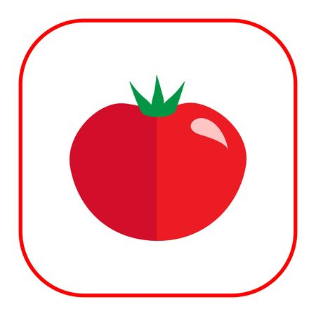 carbohydrate: Multicolored vector icon of ripe red tomato
