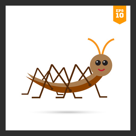 feeler: Multicolored vector icon of cartoon locust, side view