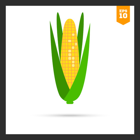 cob: Multicolored icon of corn cob with green leaves