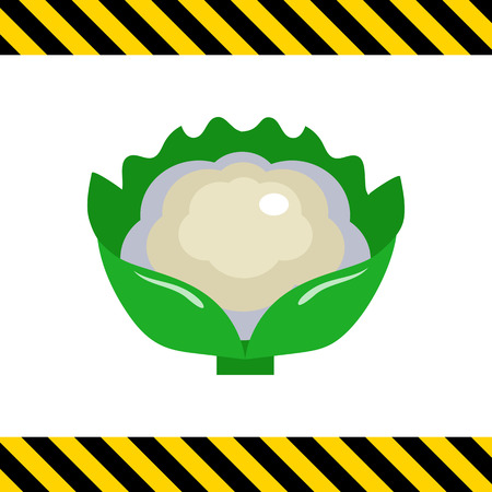 Multicolored vector icon of cauliflower curd with green leaves Banco de Imagens - 50783916