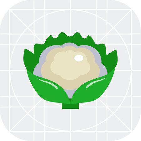 Multicolores icône vecteur de chou-fleur caillé avec des feuilles vertes