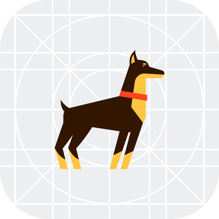 pincher: Multicolored vector icon of standing doberman dog