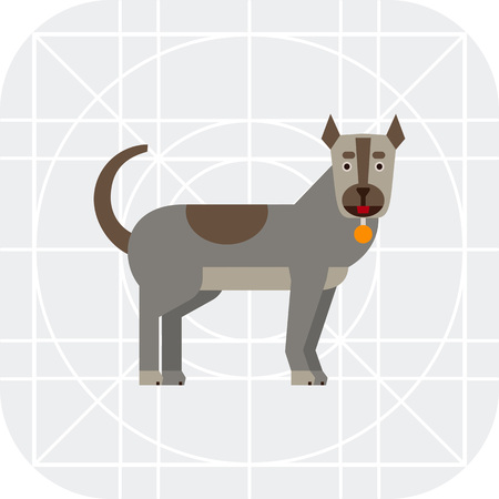 dog collar: Multicolored vector icon of grey dog with dog collar