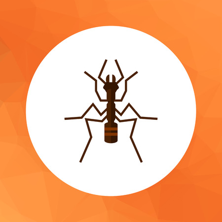 feeler: Multicolored vector icon of ant, top view
