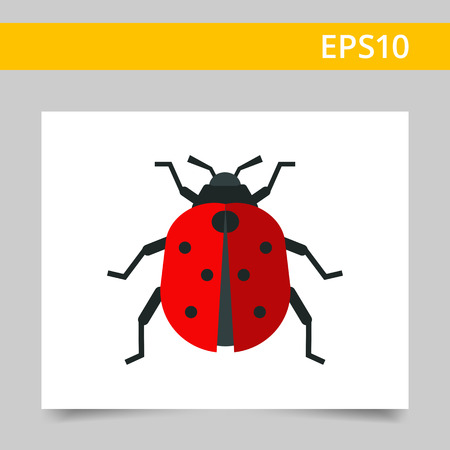 chitin: Multicolored vector icon of ladybird, top view