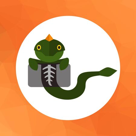 animals x ray: Multicolored vector icon of lizard making chest X-ray