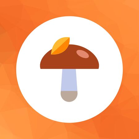 stipe: Multicolored vector icon of mushroom with yellow leaf on cap Illustration