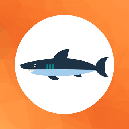 gills: Multicolored vector icon of shark, side view