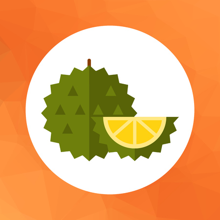 Durian: Multicolored vector icon of whole exotic fruit durian and cut piece