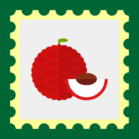 protuberance: Multicolored vector icon of whole fruit litchi and cut piece Illustration