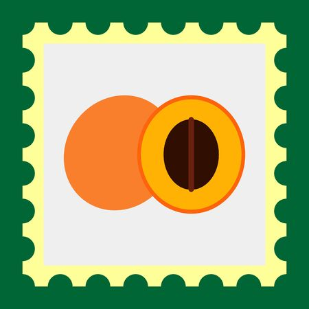 honeyed: Vector icon of apricot and cut apricot half