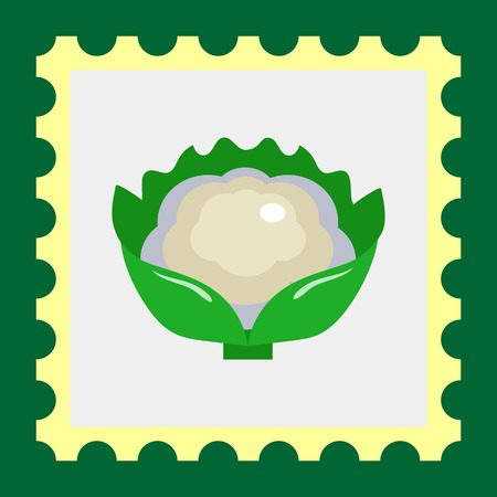 Multicolored vector icon of cauliflower curd with green leaves