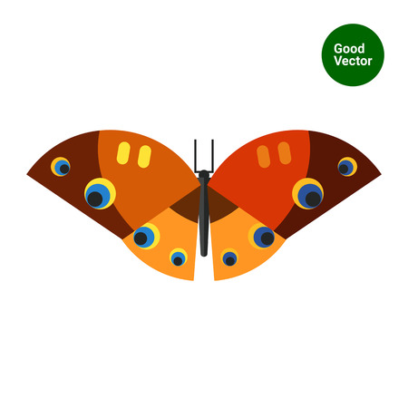 arthropod: Multicolored vector icon of brown orange butterfly with yellow stripes and black, yellow, blue spots