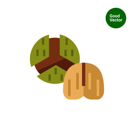 nutshell: Multicolored vector icon of chestnut in nutshell and one without Illustration