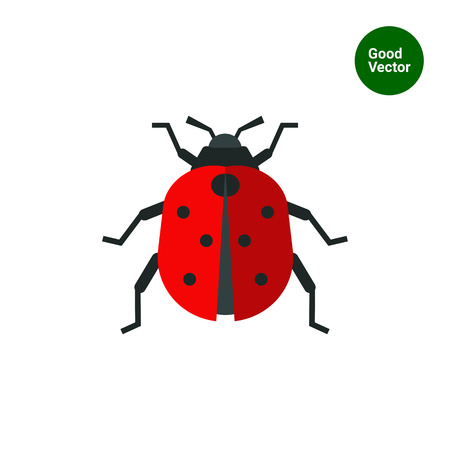 ladybird: Multicolored vector icon of ladybird, top view