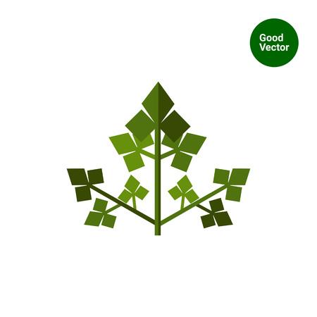 Wielobarwny płaskim ikoną zielonej pietruszki liść, odizolowane na białym