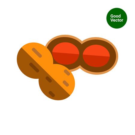 nutshell: Multicolored vector icon of peanut with nutshell