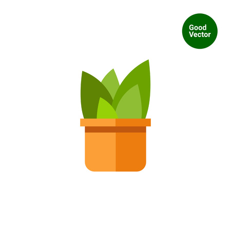 potting soil: Multicolored vector icon of flowers in pot
