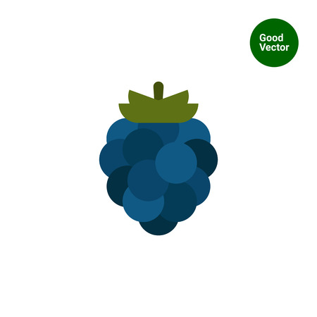 rational: Vector icon of single ripe fresh blackberry
