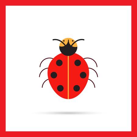 ladybird: Multicolored vector icon of cartoon ladybird, top view