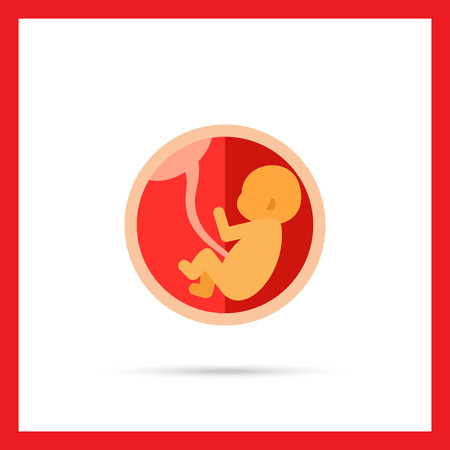 umbilical: Multicolored vector icon of fetus with umbilical cord