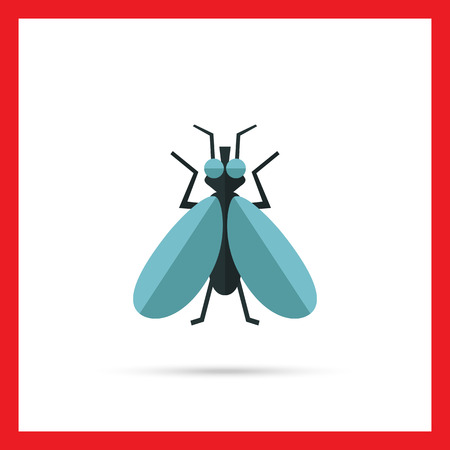 feeler: Multicolored vector icon of fly, top view