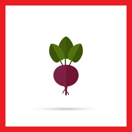 beetroot: Vector icon of fresh beetroot with leaves Illustration