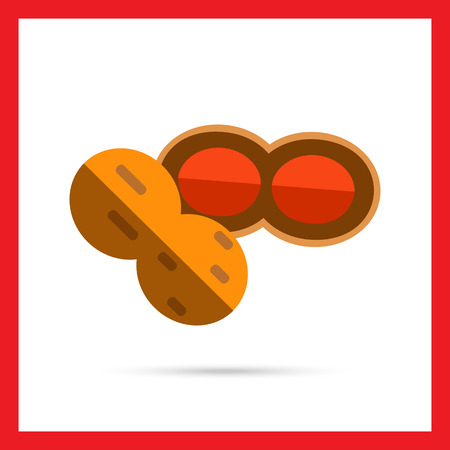 nutshell: Multicolored vector icon of peanut with nutshell