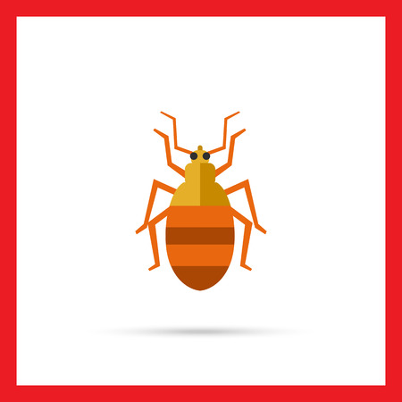 chitin: Multicolored vector icon of striped beetle, top view