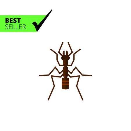 anthill: Multicolored vector icon of ant, top view