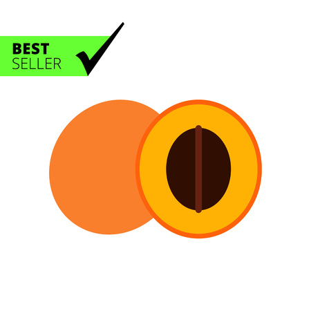 apricot: Vector icon of apricot and cut apricot half