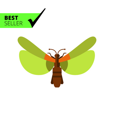 arthropod: Multicolored vector icon of beetle with green wings, top view